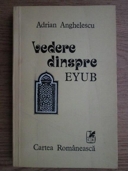 Anticariat: Adrian Anghelescu - Vedere dinspre Eyub
