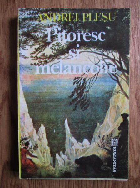 Anticariat: Andrei Plesu - Pitoresc si melancolie