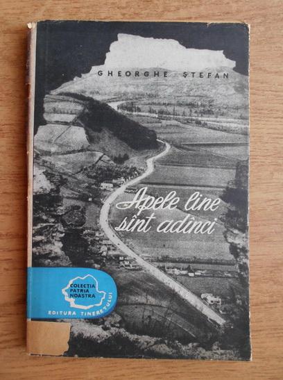 Anticariat: Gheorghe Stefan - Apele line sunt adanci