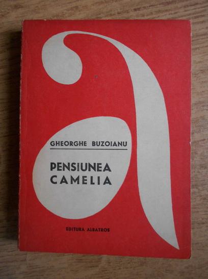 Anticariat: Gheorghe Buzoianu - Pensiunea Camelia