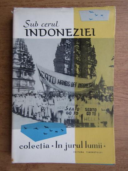 Anticariat: Sub cerul Indoneziei