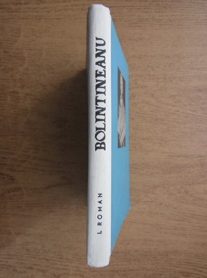 Anticariat: Ion Roman - Dimitrie Bolintineanu