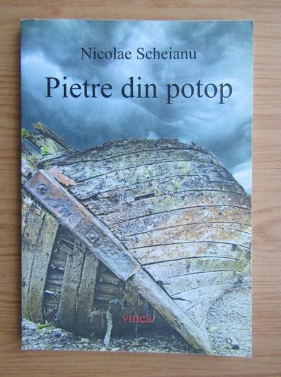 Anticariat: Nicolae Scheianu - Pietre din potop