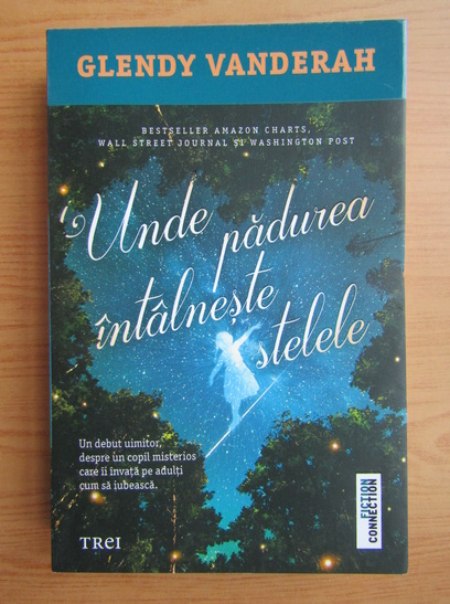 Anticariat: Glendy Vanderah - Unde padurea intalneste stelele