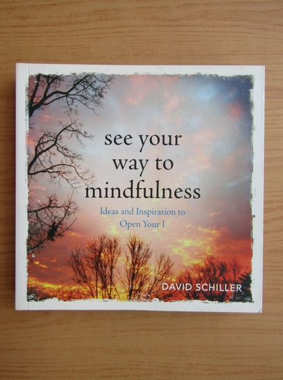 Anticariat: Schiller - See your way to mindfulness