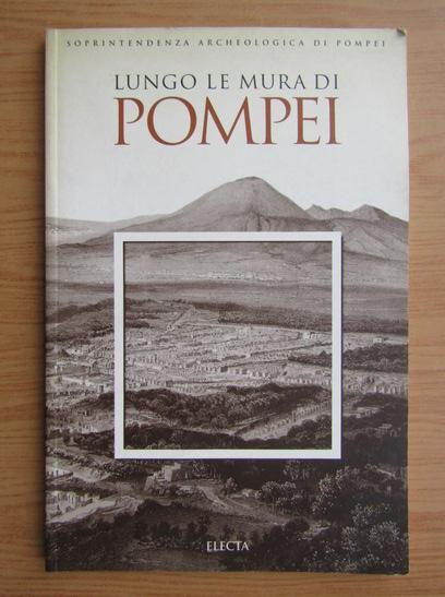 Anticariat: Lungo le mura di Pompei