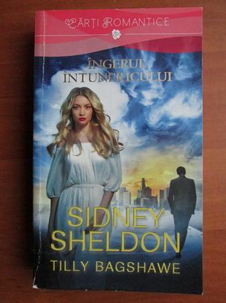 Anticariat: Sidney Sheldon - Ingerul intunericului