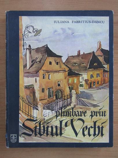 Anticariat: Iuliana Fabritius Dancu - Plimbare prin Sibiul Vechi