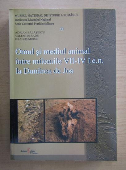 Anticariat: Adrian Balasescu - Omul si mediul animal intre mileniile VII-IV i. e. n. la Dunarea de Jos