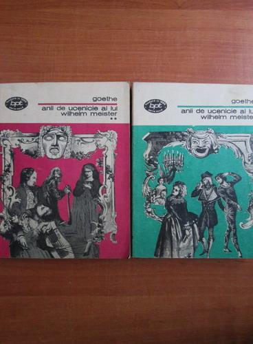 Anticariat: Goethe - Anii de ucenicie ai lui Wilhelm Meister (2 volume)