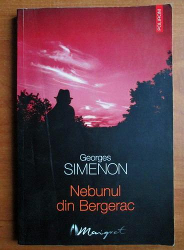 Anticariat: Georges Simenon - Nebunul din Bergerac