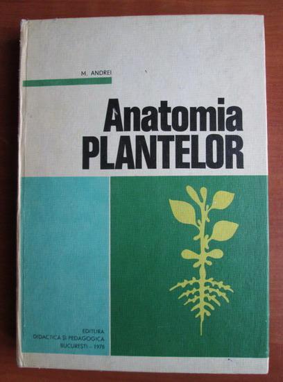 Anticariat: M. Andrei - Anatomia plantelor