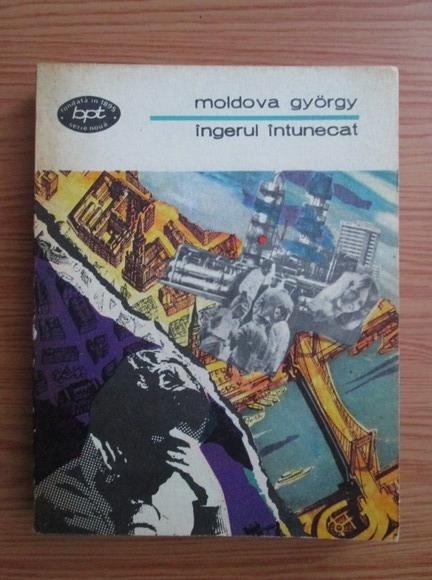 Anticariat: Gyorgy Moldova - Ingerul intunecat