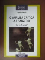 Catalin Zamfir - O analiza critica a tranzitiei. Ce va fi dupa