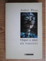 Anticariat: Andrei Plesu - Chipuri si masti ale tranzitiei