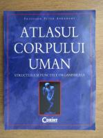 Anticariat: Peter Abrahams - Atlasul corpului uman. Structura si functiile organismului
