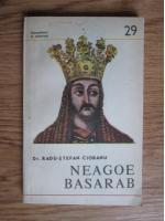 Anticariat: Radu-Stefan Ciobanu - Neagoe Basarab