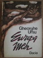 Anticariat: Gheorghe Ursu - Europa mea