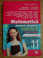 Anticariat: Valentin Nicula - Matematica. Breviar teoretic. Exercitii si probleme propuse si rezolvate. Teste de evaluare