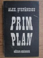 Alexandru Stefanescu - Prim plan