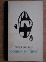 Cezar Baltag - Odihna in tipat