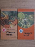 Anticariat: Natalia Tautu Stanescu - Camara iernii (2 volume)