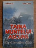 Anticariat: Pavel Corut - Taina muntelui ascuns