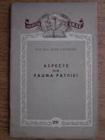 Anticariat: Raul Calinescu - Aspecte din fauna patriei
