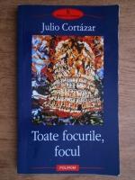 Anticariat: Julio Cortazar - Toate focurile, focul