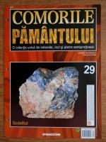 Comorile Pamantului, nr. 29. Sodalitul