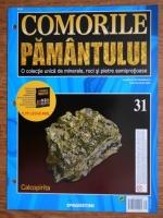 Comorile Pamantului, nr. 31. Calcopirita