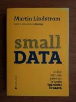 Martin Lindstrom - Small Data. Indicii marunte care scot la iveala trenduri in masa