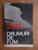 Corneliu Stefanache - Drumuri de fum