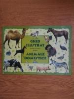 Anticariat: Dana Nicolae - Ghid ilustrat pentru cei mici despre animale domestice