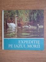 Anticariat: Expeditie pe Iazul Morii