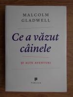 Anticariat: Malcolm Gladwell - Ce a vazut cainele si alte aventuri