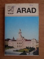 Arad. Monografie (judetele patriei)
