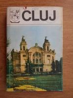 Cluj. Monografie (Judetele patriei)