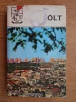 Anticariat: Olt. Monografie (judetele patriei)