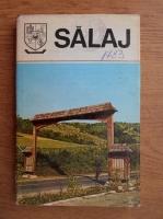Salaj. Monografie (Judetele patriei)
