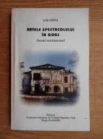 Ion Cepoi - Artele spectacolului in Gorj. Jurnal sentimental
