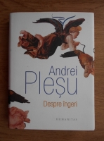 Anticariat: Andrei Plesu - Despre ingeri