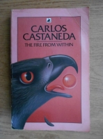 Carlos Castaneda - The fire from within