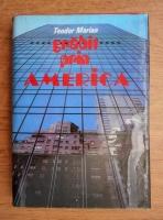 Anticariat: Teodor Marian - Grabit prin America