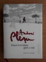 Andrei Plesu - Despre frumusetea uitata a vietii (editie cartonata)