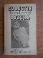 Anticariat: Augustin Buzura - Drumul cenusii