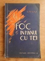 Anticariat: Isac Peltz - Foc in hanul cu tei (volumul 2, 1934)