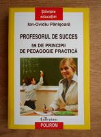 Ion Ovidiu Panisoara - Profesorul de succes. 59 de principii de pedagogie practica