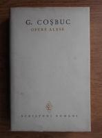 Anticariat: George Cosbuc - Opere alese (volumul 1)