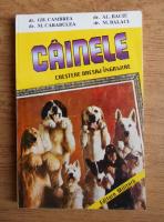Anticariat: Gh. Cambrea - Cainele, crestere, dresaj, ingrijire